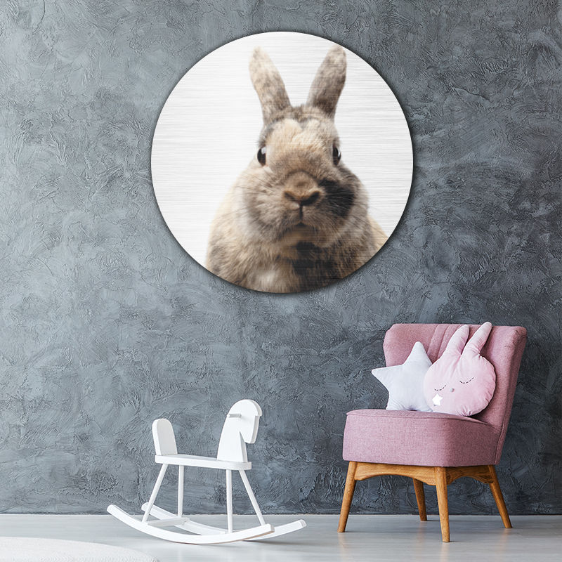 ToF Little rabbit rond