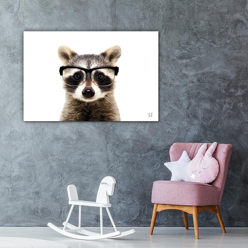 ToF Funny raccoon wasbeer liggend