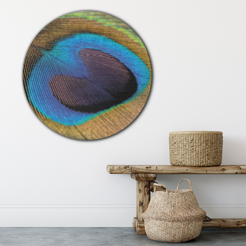 ToF Peacock feather rond