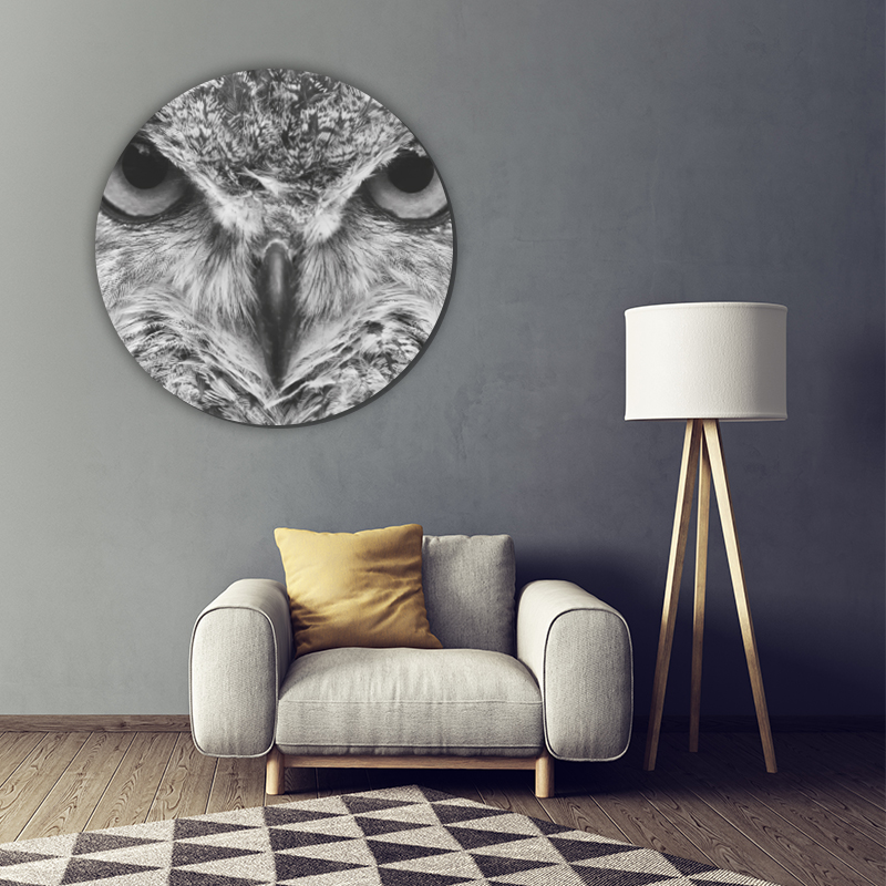 ToF Eagle owl rond