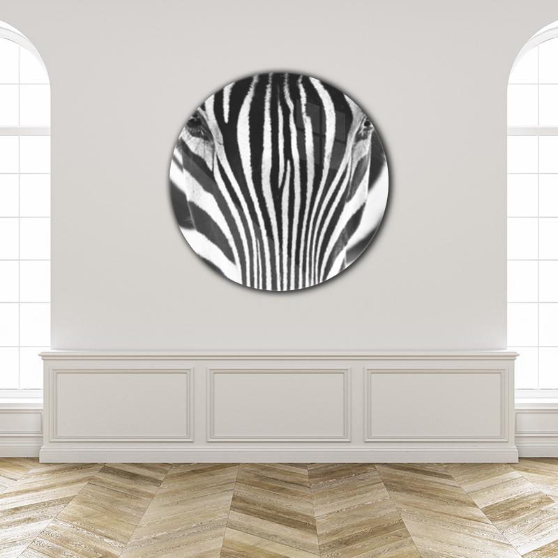 ToF Close-up zebra rond