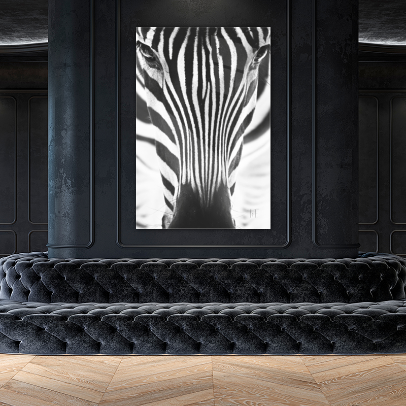 Close-up zebra op plexiglas staand