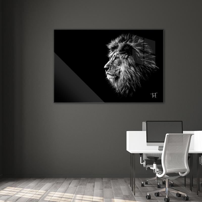 ToF Lion liggend