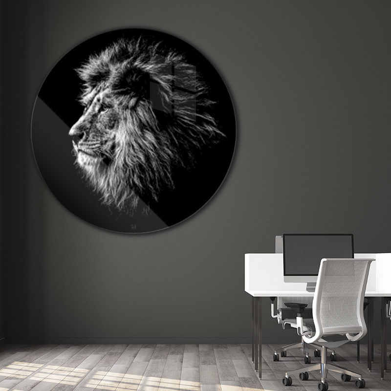 ToF Lion rond